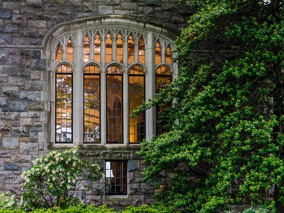 Knowledge Window