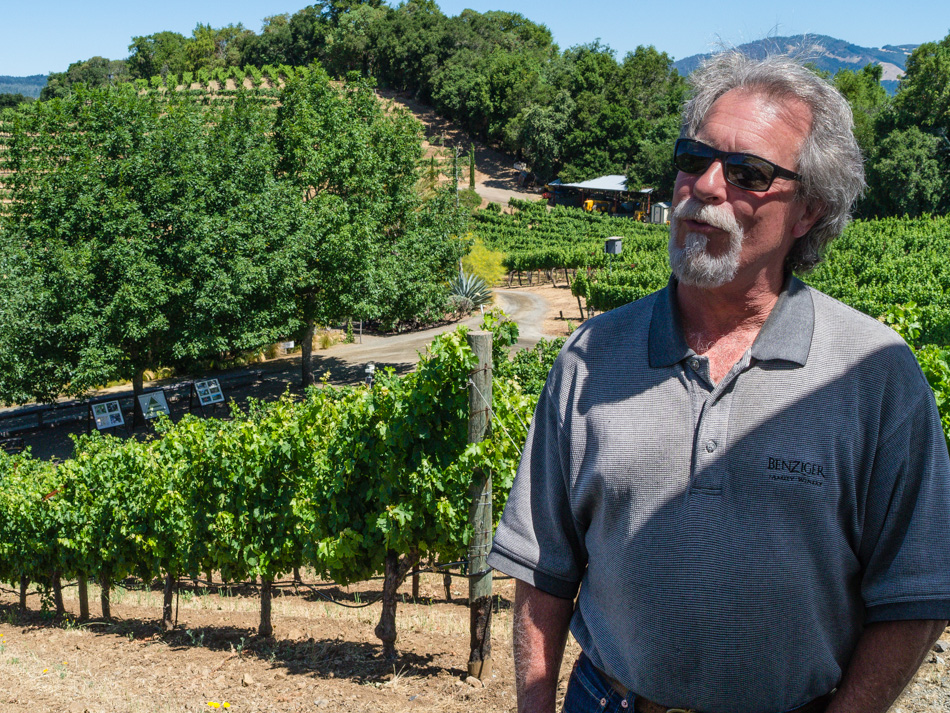 Vineyard Tour Guide