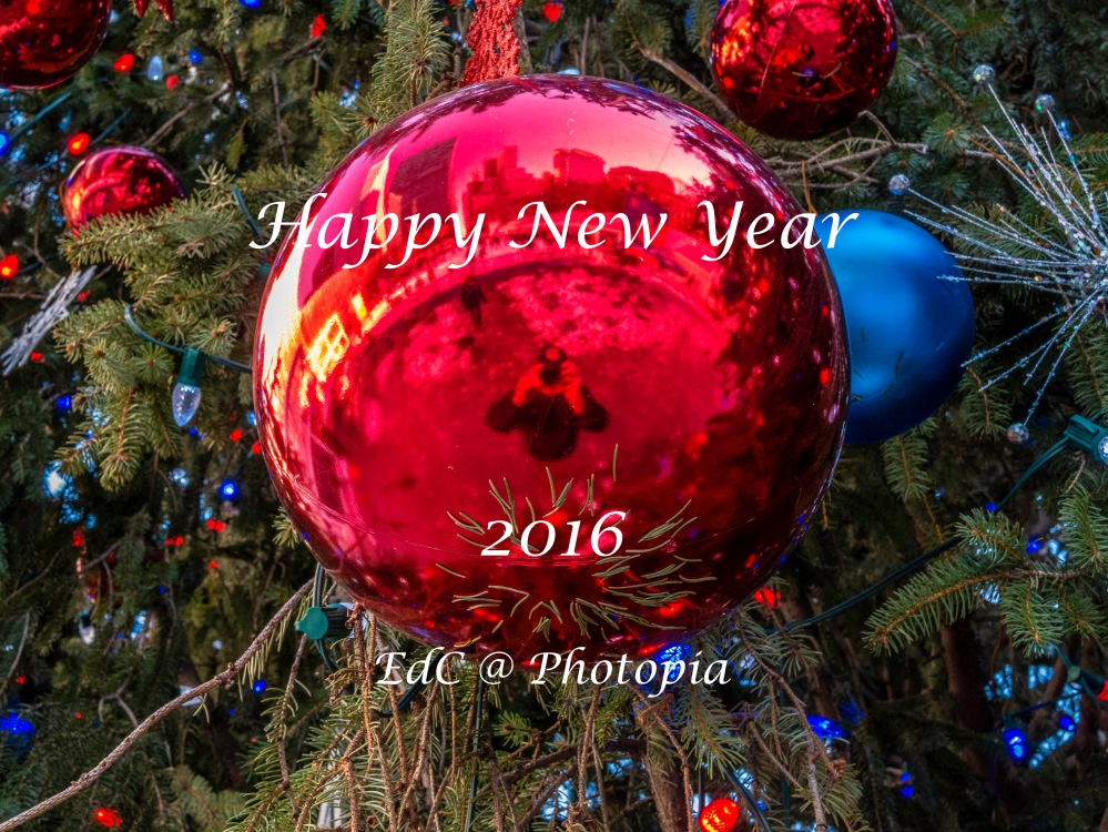 EdC_ 2016 New Year Greeting